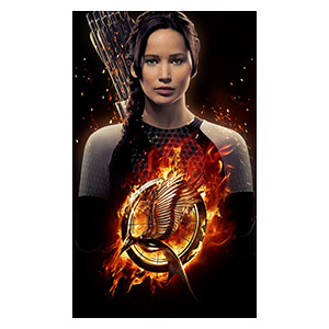 Hunger Games. Размер: 60 х 100 см